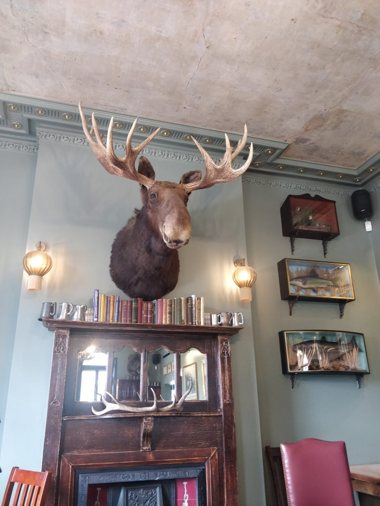 The Bull And Last inside - stag on wall